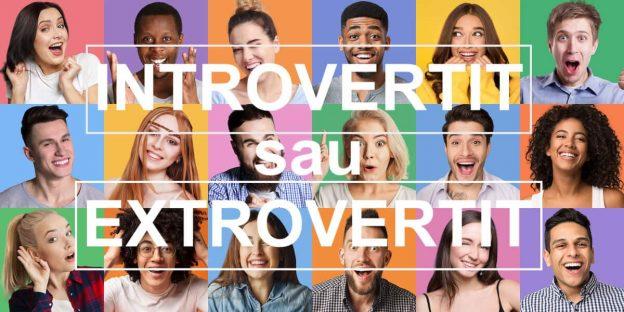 Grup de oameni Introvertiti si Extrovertiti